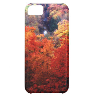 Autumn Leaves Changing Color iPhone 5C Case