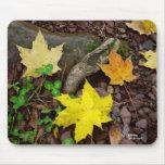 Autumn Leaves Clover Pebbles Mousepad