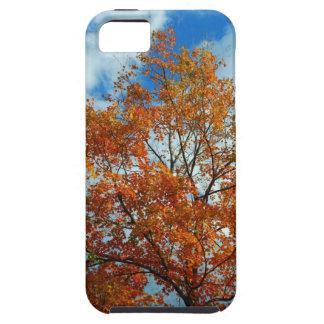 Autumn Leaves Color Change IPhone 5 Case