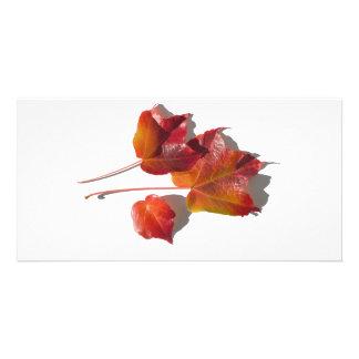 Autumn Leaves Customized Photo Card