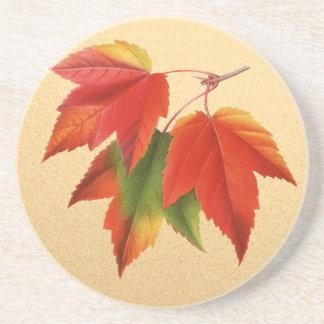 Autumn Leaves Fall Colors Maple Leaf on Gold Coaster