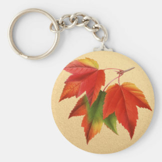 Autumn Leaves Fall Colors Maple Leaf on Gold Key Ring