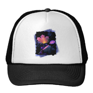 Autumn Leaves in Neon and Blue Cap