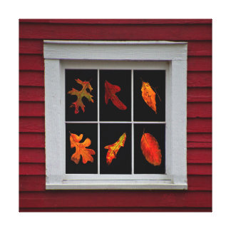 Autumn Leaves in Old Mill Window Stretched Canvas Print