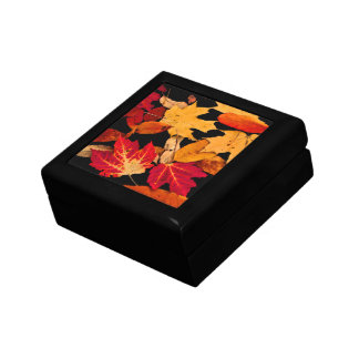 Autumn Leaves in Red Orange Yellow Brown Small Square Gift Box