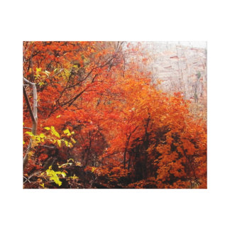 autumn leaves in Zion National Park wrapped Canvas Gallery Wrap Canvas