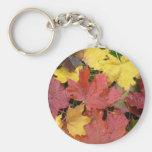 Autumn Leaves Keychains