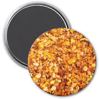Autumn Leaves Large Round Magnet