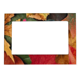 Autumn Leaves Magnetic Frame
