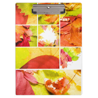 Autumn leaves mix by storeman clipboard
