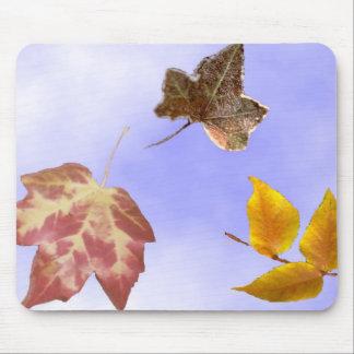 Autumn Leaves Mouse Mat