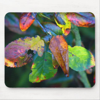 Autumn Leaves Mousemat