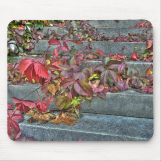 Autumn leaves mousepad