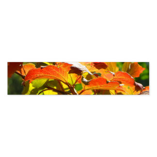 Autumn Leaves Napkin Band