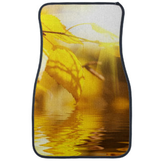 Autumn leaves on a sunny day car mat