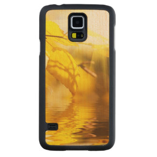Autumn leaves on a sunny day carved maple galaxy s5 case