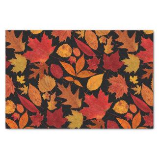 Autumn Leaves on Black Tissue Paper
