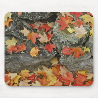 Autumn leaves on stone wall, Minute Man Mouse Pad