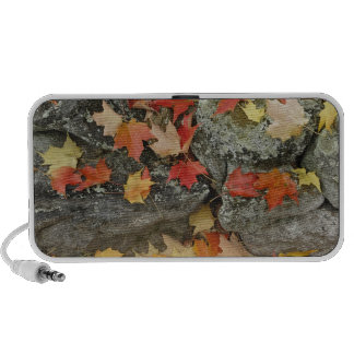 Autumn leaves on stone wall, Minute Man iPhone Speaker