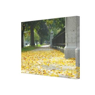 Autumn Leaves on The Sidewalk Canvas Prints