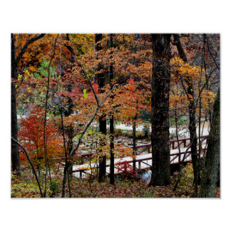 Autumn Leaves on Trees in Arkansas Value Poster