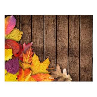 Autumn Leaves on Wood Background Postcard