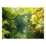Autumn leaves over a stream photo art