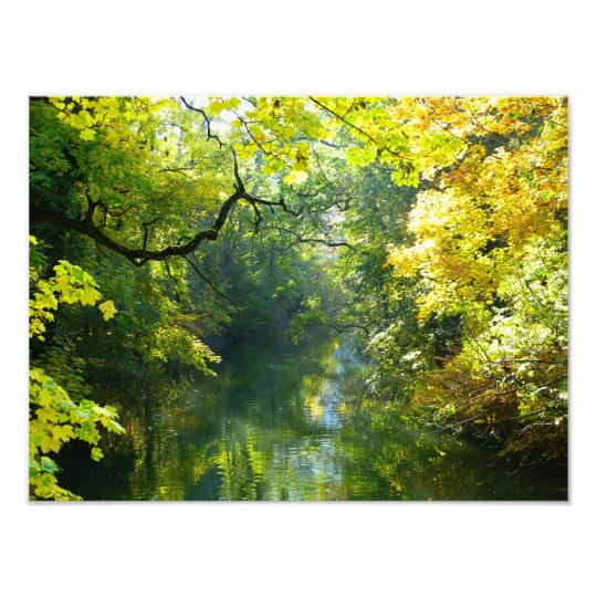 Autumn leaves over a stream photo print
