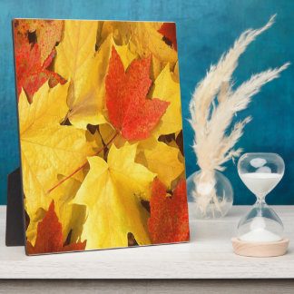 AUTUMN LEAVES PLAQUE
