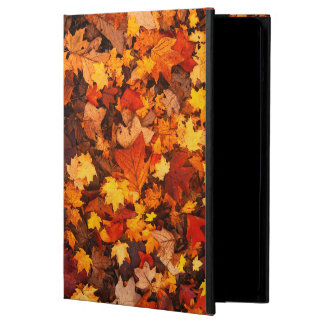 Autumn Leaves Powis iPad Air Case