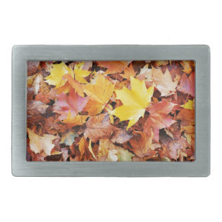 Autumn leaves rectangular belt buckles