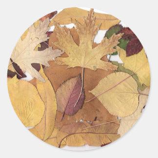 Autumn Leaves Round Sticker