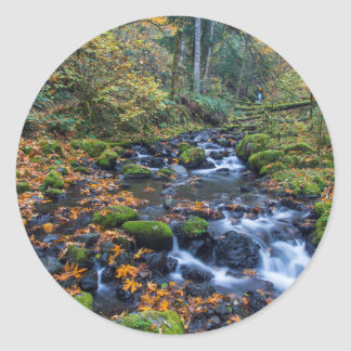 Autumn Leaves Scattered Along Gorton Creek Classic Round Sticker