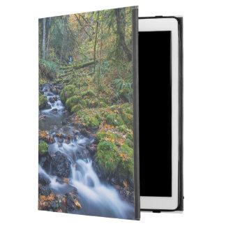 "Autumn Leaves Scattered Along Gorton Creek iPad Pro 12.9"" Case"