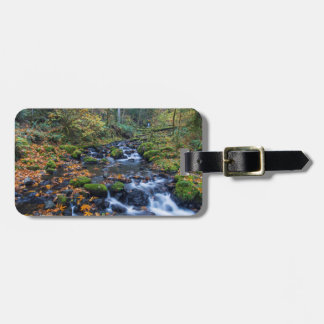 Autumn Leaves Scattered Along Gorton Creek Luggage Tag