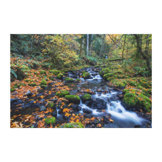 Autumn Leaves Scattered Along Gorton Creek Stretched Canvas Print