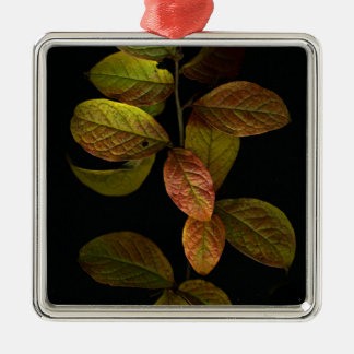 Autumn leaves Silver-Colored square decoration