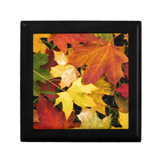 Autumn Leaves Small Square Gift Box