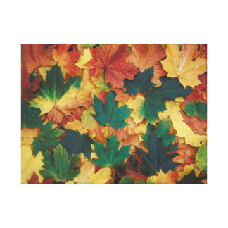 AUTUMN LEAVES STRETCHED CANVAS PRINTS