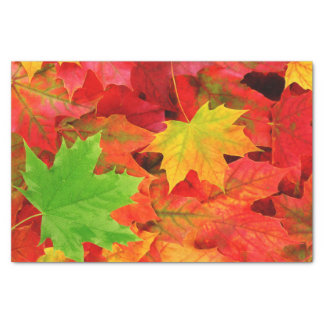 Autumn Leaves Tissue Paper