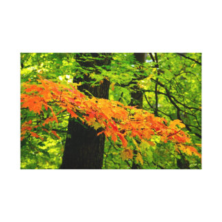 Autumn Leaves Wrapped Canvas Stretched Canvas Prints