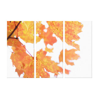 Autumn Leaves Wrapped Canvas Gallery Wrapped Canvas