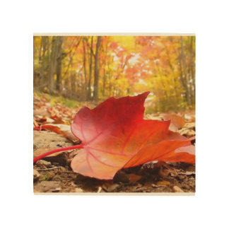 Autumn Love Wood Print