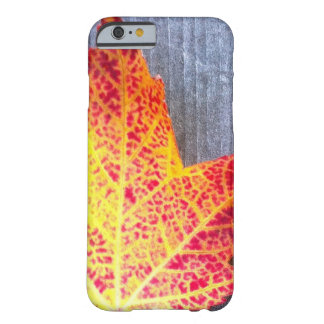 Autumn Maple Leaf Barely There iPhone 6 Case