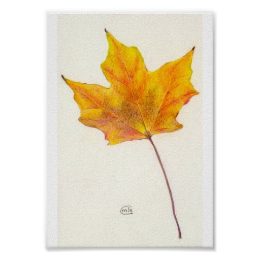 Autumn Maple Leaf in Shades of Gold Poster