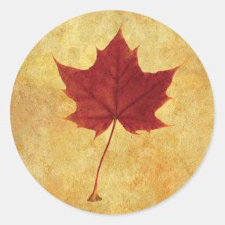 Autumn Maple Leaf Red Classic Round Sticker