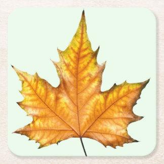 Autumn maple leaf square paper coaster