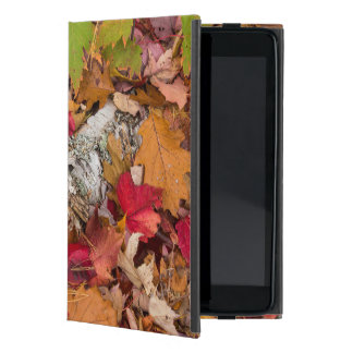Autumn Maple Leaves Cover Birch Bark On Forest iPad Mini Case