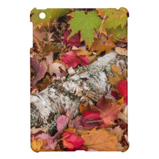 Autumn Maple Leaves Cover Birch Bark On Forest iPad Mini Covers