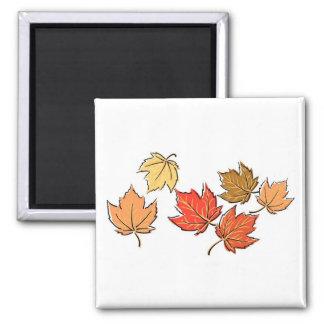 Autumn Maple Leaves Magnet